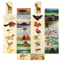Loteryjka  Zwierzątka i ich domki