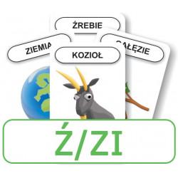 Logopedyczny Piotruś. Część X - głoska Ź/ZI